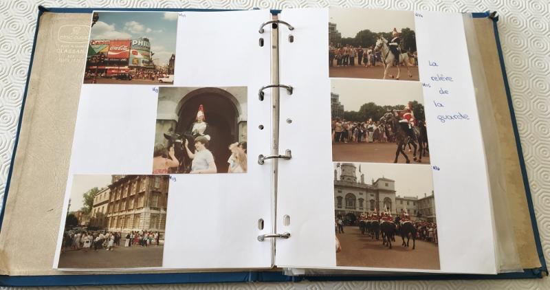 Fotos organisieren